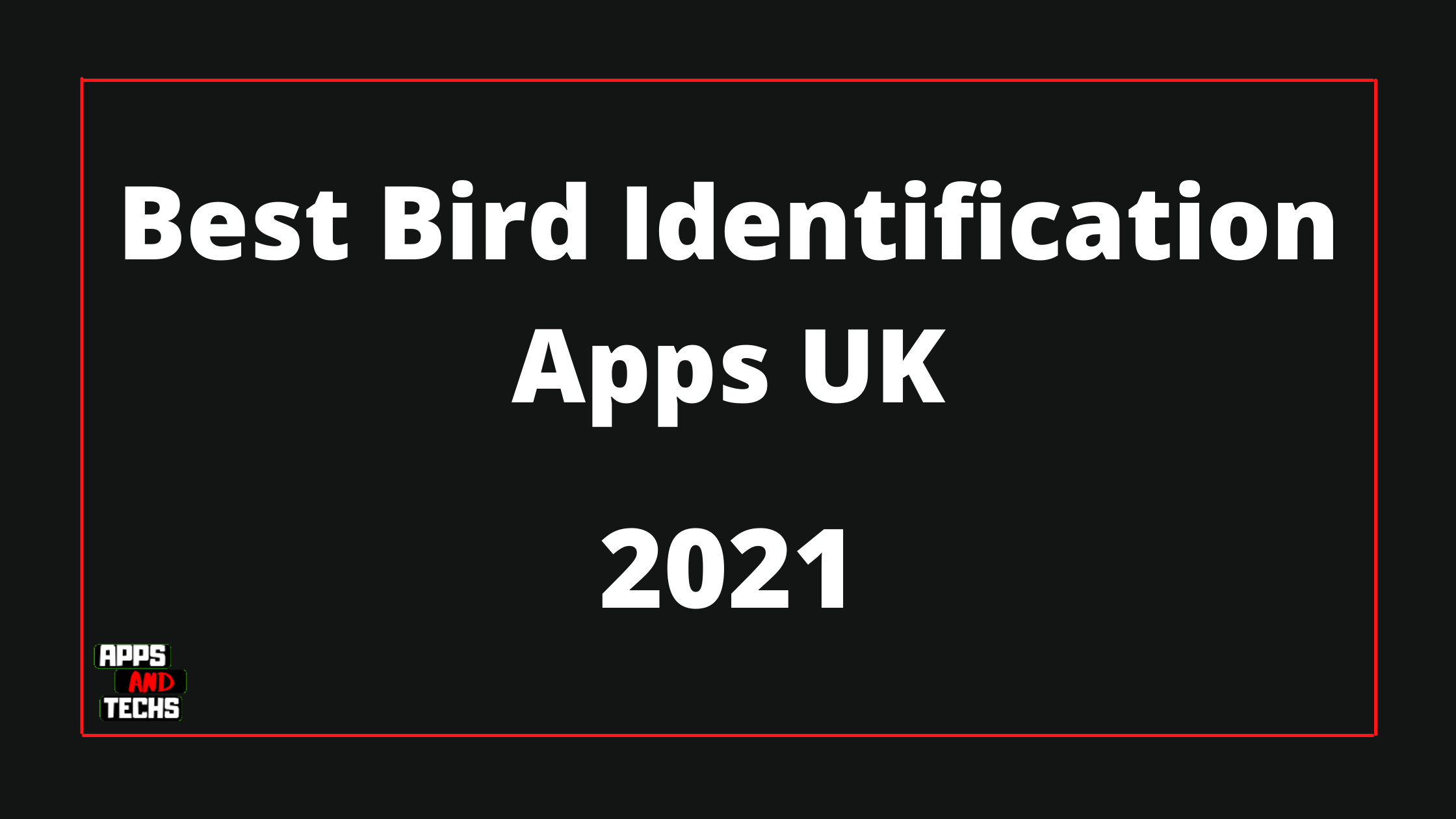 Best Bird Identification Apps UK | Android – IOS | Top 5